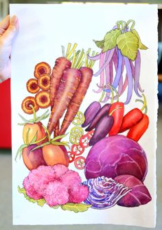 Fedco seeds organic heirloom seeds promo code or discount coupon the cover for the 2nd edition of our 2015 spring catalog is all about the purple fandeluxe Images