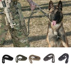 Type: Dogs Item Type: Training Collars Model Number: Dog Training Leash…