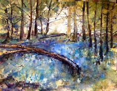 Watercolour of bluebell woods