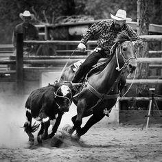 Wyoming Team Roping