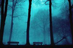 2 Benches and 1 Slide - Dirk Wustenhagen