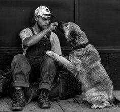 They're literally all over. Most likely because they are two of the most popular dog breeds in America according to the American Kennel Club. Types Of German Shepherd, Homeless Veterans, Popular Dog Breeds, City Pass, Homeless People, Homeless Dogs, Poodle Mix, Helping The Homeless, Service Dogs