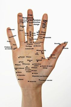Health Care Home Inspiration home studio inspiration Natural Health Remedies, Herbal Remedies, Foot Reflexology, Acupuncture Points, Healthier You, Health And Beauty Tips, Body Care, Herbalism, Health Care
