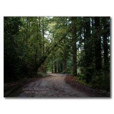 Thanks, Kathy (Chico, CA) for buying the California Seasons – Redwoods Road – Postcard Enjoy! -Martie (Blue Beach Song)   http://www.zazzle.com/california_seasons_redwoods_road_postcard-239992055046403631?rf=238706427652551388