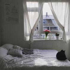 awachan77さんの、Bedroom,猫,シンプル,ホワイト,黒猫,花のある暮らし,ねこのいる日常,ミニマリスト,studio esinamについての部屋写真