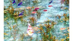 岐阜県にある「名前のない池」が、美しすぎる・・・ - ライブドアニュース