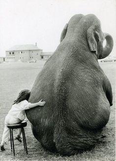 girl with elephant