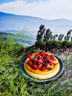 This is made with brocciu, a fresh sheep's milk cheese similar to ricotta but stronger in flavour. Brocciu is not readily available in Australia, so substitute fresh ricotta. Family Cake, Milk And Cheese, Springform Pan, Egg Whisk, Cake Tins, Corsica, Let Them Eat Cake, The Fresh, Cheesecake