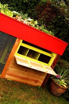 I love this, a chicken coop with a garden on top. Keeps the chickens cool while growing some great stuff, I think this one is a winner.