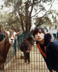 jason schwartzman and a goat.