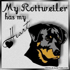 I Love Rottweilers