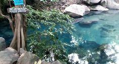 Tempat wisata, lokasi, fasilitas, alamat situ biru cilembang sumedang yang memiliki keindahan berupa danaunya yang berwarna biru