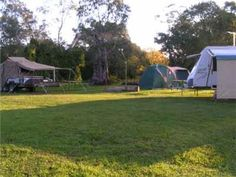 Camping in Sydney Outdoor Gear, Sydney, Tent, Australia, Camping, Campsite, Store, Tents, Campers