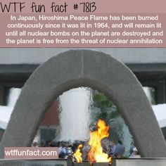 Japan's Hiroshima Peace Flame – WTF fun facts – Talk Funny Jokes Wow Facts, Wtf Fun Facts, True Facts, Funny Facts, Random Facts, Funny Jokes, Random Stuff, The More You Know, Did You Know