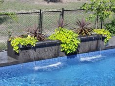 Modern Rectangle Pool Design tropical pool