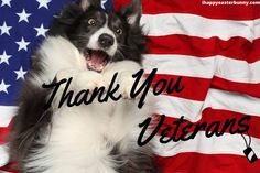 Wish Your Loving One A Very Happy Veterans Day 2020 With Happy Veterans Images 😍 :) 💜❤️💜❤️💜❤️ 😍 :) #HappyVeteransDayImages #VeteransDay2020Images #ThankYouVeteransImages #VeteransDayThankYouImages #VeteransDayImagesFree
