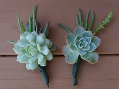 Succulent Boutonnieres