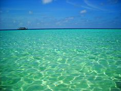 Morning view from the lagoon #Maldives #lagoon #boat #dhoni #cruise #holidays #backpackers #relax #bathing #snorkeling #beach #50shadesofblue http://cruise-maldives.com/tours-watersports/day-visit-summer-island-resort-buffet-lunch-included