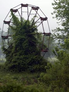 """I always see abandoned things like houses and wonder, """"How did they ever get like that?"""""""