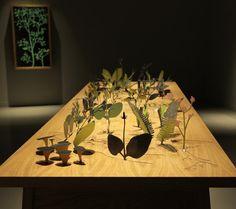 Plants Bloom On MischerTraxlers Table When You Move Away