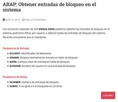 Manual SAP/ABAP para obtener entradas de bloqueo en el sistema con la función ENQUE_READ Filter, Entry Ways