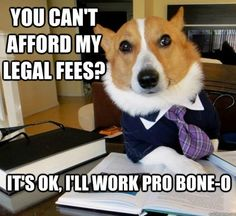 I always find it funny when people hire lawyers that they can't afford, only to be sued by them later. You know, they do make their living filing court cases lol. I love having an attorney as a best friend ;) Legal help for free!