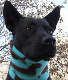 Who let the dogs out?  Warm double-sided fleece neckwarmer with chocolate dog silhouettes, $19.95.