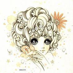 Daisy by Mr. Takahashi Macoto