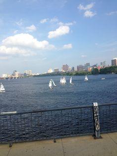 Harvard sailing club.