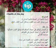 اسألوا الله تعالى أن يجدد الإيمان في قلوبكم #Allah #tip_of_the_day #life