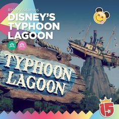 Con los grupos #esmeraldaJ16 y #rosaJ16 hoy estamos en Typhoon Lagoon Disney's Water Park con la pile de olas más grandes del mundo    #EstamosEnDisney con #Enjoy15!