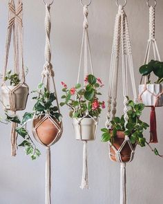 macrame/macrame anleitung+macrame diy/macrame wall hanging/macrame plant hanger/macrame knots+macrame schlüsselanhänger+macrame blumenampel+TWOME I Macrame & Natural Dyer Maker & Educator/MangoAndMore macrame studio Macrame Hanging Planter, Macrame Plant Holder, Hanging Planters, Plant Holders, Hanging Plant Diy, Indoor Hanging Baskets, Hanging Potted Plants, Indoor Plant Hangers, Hanging Flower Pots