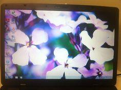 MS-171F Toughbook Intel Core Duo 2.16 GHz WebCam 4 GB RAM 120 GB DVRW Win7 WiFi