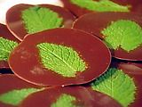 Chocolate-Mint Tiddlywinks recipe from Sweet Dreams via Food Network Other Recipes, Sweet Recipes, Fun Recipes, Candy Recipes, Chocolate Mint Plant, Growing Mint, Mint Plants, Chocolate Pictures, Good Food