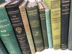 Want vintage books by color? We've got you covered! Beautiful vintage books in all shades of green.