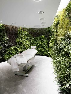 Location: Sydney Purpose/Activity: Spa treatment (facial and message), quiet zone, library material: living wall Concept: bring the outside inside, tranquility, nature Spa Treatment Room, Spa Treatments, Massage Therapy Rooms, Massage Room Design, Massage Room Decor, Massage Table, Spa Rooms, Spa Design, Salon Design