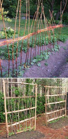 A Row of Vertical Wicker Garden Trellis