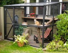 """A catio—outdoor cat enclosure or """"cat patio""""—is the purr-fect solution for living indoor and outdoor while keeping your cat safe, healthy, and happy. Cat Run, Space Cat, Cage Chat, Outdoor Cat Enclosure, Diy Cat Enclosure, Pet Enclosures, Rabbit Enclosure, Cat Condo, Outdoor Cats"""
