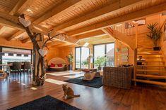 holzhaus rundstammhaus blockhaus naturstammhaus massivholzhaus das holzhaus oliver schattat. Black Bedroom Furniture Sets. Home Design Ideas