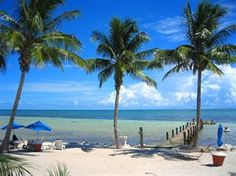 Yellowtail Inn (Marathon, United States of America) | Expedia Florida Keys Hotels, Florida Travel, Places To See, Places Ive Been, City Marathon, Dream City, Vacation Packages, Travel News, Fort Lauderdale