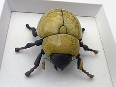Exactly what I was wanting to make! Looks just like my lovely beetle from Arizona! Hmmm... Raku?