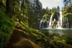 McArthur Burney Falls Memorial State Park || plus 18 other state parks in Northern California