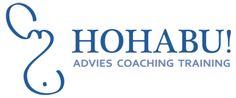 2009 - heden Eigenaar   Trainer   Coach bij HOHABU! advies, coaching & training. Vanuit mijn eigen bedrijf heb ik diverse communicatie en verkooptrainingen gegeven en begeleid ik particulieren en professionals door middel van individuele coaching en training.