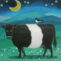 Moonlit Beltie by Ailsa Black. Blank greeting card of a belted galloway cow by Ailsa Black. Scottish artist, painter and illustrator.