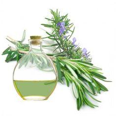 perfume de romero