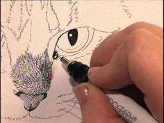 @Samantha Riley   This video workshop, playing now on www.ArtistsNetwork.TV takes you through the steps to paint a cat and then a gull by the beach in pen, ink and watercolor. You'll learn how to create criss-cross lines for wavy fur, use a dotty pattern for texture in the eyes, as well as techniques for brush and pen texture in the surrounding scenery--woodgrain...