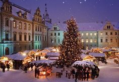 Spend Christmas in Vienna and go to the Christmas Market