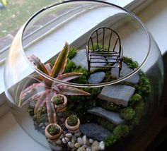 Terrariums by Natureworks Succulents, Birds Etc By: The Succulent Perch