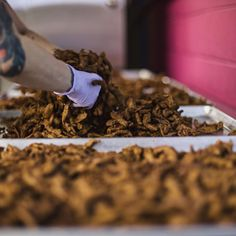 Why Louisville's Vegan Jerky Company Refuses to Play by the Book