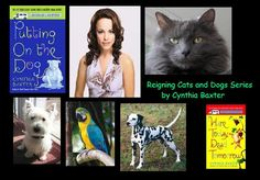 The Reigning Cats and Dogs series by Cynthia Baxter is about Dr. Jessica Popper a vet turned sleuth. My pick for Jessie would be Rachel McAdams.